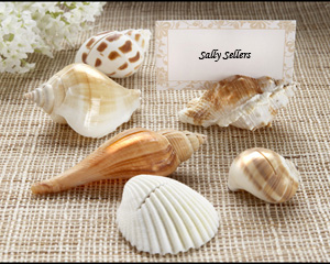 """Shells by the Sea"" Authentic Shell Placecard Holders with Matching Placecards"