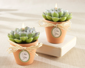 &quot;Desert Rose&quot; Cactus Candle