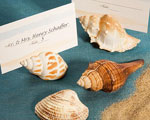 Natural Selections Collection Shell Design Place Card Holders wedding favors