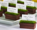 """Evergreen"" Window Planter Place Card/Photo Holder (Set of 4) wedding favors"